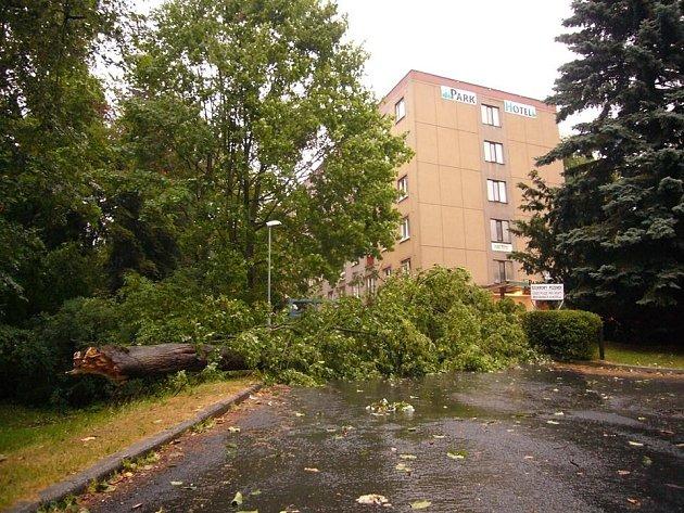 Desítky stromů popadaly v neděli odpoledne při silné bouřce, která se přehnala nad Tachovskem. Na snímku strom, který se skácel k zemi na okraji parku v Tachově