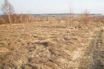Pozvolna zarůstající plochy bývalého vojenského cvičiště na Štokovském vrchu.