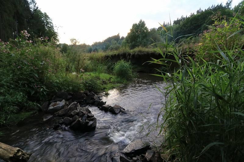 Michalovy Hory a okolí
