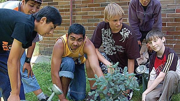 Kluci ze ZŠ Petra Jilemnického včera zasadili u svojí školy čtyři malé stromky