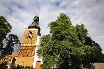 Svojšínský kaštan obsadil v letošním ročníku soutěže Strom roku celkové 9. místo
