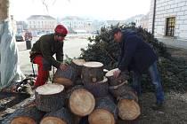 PRACOVNÍCI SPECIALIZOVANÉ firmy skládají špalky, které zbyly po pokácení smrku na stříbrském náměstí. Strom léta sloužil především jako vánoční smrk.