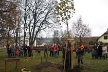 V Kladrubech byl vysazen pamětní strom - Platan , který ještě v Kladrubech nestál.