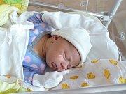 Eliška (3,64 kg, 51 cm) přišla na svět 3. listopadu v 8:33 ve Fakultní nemocnici v Plzni. Z narozené své prvorozené holčičky se radují rodiče Kristýna Střelková a Jaroslav Rolko z Chodové Plané.