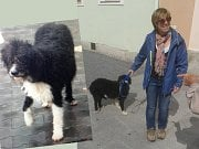 Fenka Luna se šťastnou majitelkou.