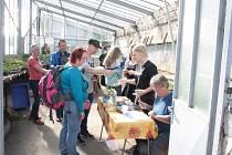 Rajčata zákazníkům trhá přímo ze skleníku