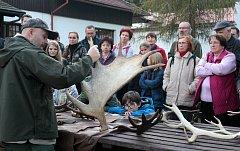 Z akce Poslech jelení říje na Kladské.