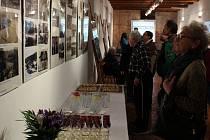 Výstava odhaluje dávno zmizelou řeku Mži