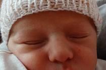 Mamince Haně a tatínkovi Liborovi ze Stříbra se 6.12. v 1:07 narodil první potomek, syn Adam Tesař. Při porodu ve FN Plzeň vážil 2990 gramů a měřil 49 cm.
