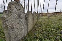 Židovský hřbitov u Telic.