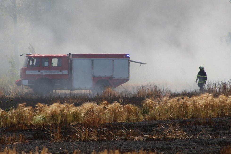 Požár obilného lánu u Chodové Plané.