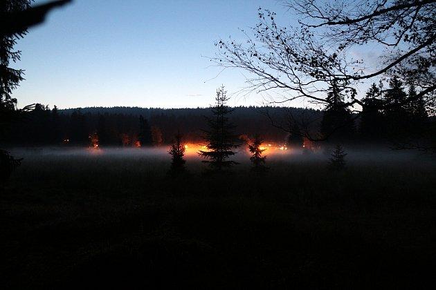 Zakce Poslech jelení říje na Kladské.