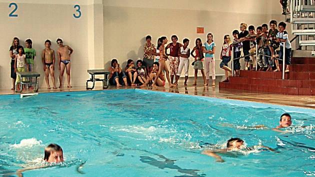 Při plavecké soutěži Tučňák Open 2007 mohou žáci a studenti proslavit jméno své školy. Akce se uskuteční pod záštitou Českého olympijského výboru.