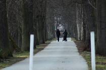 ALEJ K MINERÁLCE je alejí často navštěvovanou. Lidé ji využívají k cestě z práce i do práce, ale především k rekreačním procházkám.