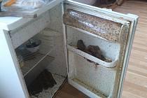 LEDNICE po otevření chataři vypadala nevzhledně a navíc obydleně. S červy si nevěděli rady.
