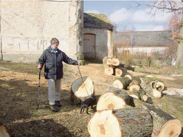MÍSTNÍ OBYVATELKA Jaroslava Zemanová (na snímku) je velice zklamaná kácením, které v Třískolupech probíhá. Dělníci pokáceli vzrostlé stromy jírovce maďalu i s kořeny. Větve těchto stromů poničily například i střechu místní kaple, do které zarůstaly.