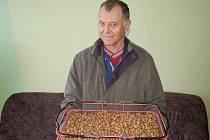 Josef Hakl z Křínova z částí letošní úrody lískových oříšků.