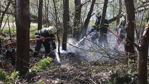 Požár klestí u rybníka Regent