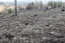 U požáru lesa a trávy na bývalém vojenském cvičišti u Stříbra zasahovali hasiči ze Stříbra a Černošína