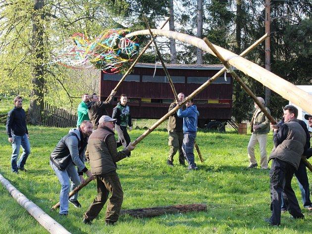 Tradice dodržují také v malé obci Labuť. Za bývalou školou se poslední dubnový den sešlo 54 místních i chalupářů, aby společně postavili májku.