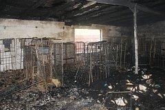 Požár průmyslové prádelný v Chodové Plané.