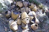 Výbušný nález objevil ve středu v lese nedaleko obce Obora na Tachovsku detektorista Václav Vobořil.