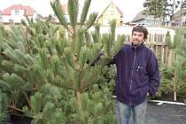 PODLE PRODEJCE vánočních stromků Evžena Feruse je největší zájem o borovice.