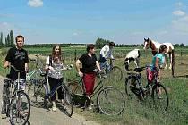 Cyklovýlety byly oblíbenou součástí pobytu mladých věřících v Nizozemí.