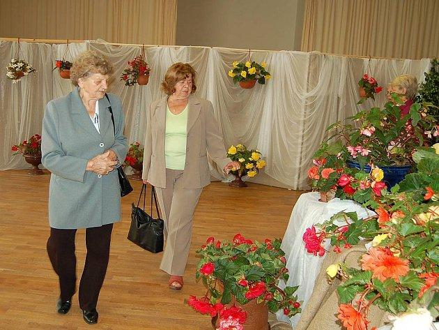 Výstavu přišli obdivovat zástupci všech věkových kategorií. Pořadatel nám také řekl, že mezi návštěvníky je i spousta mužů, kteří květinám opravdu rozumí.