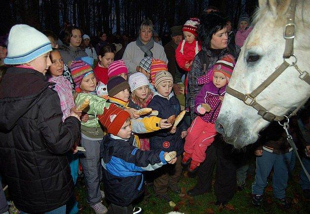 Děti obdarovaly v parku bílého koně