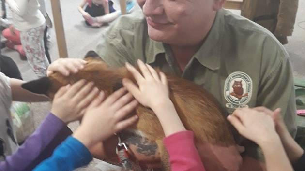 Ve školní družině si děti mohly pohladit lišku