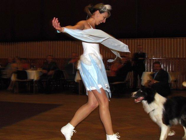 Na sobotním městském plese ve Stříbře si s chutí zatančila také zvířata
