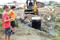 Rosničky z kluziště v Boru mají nový domov