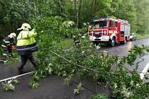 Dobrovolníci odstranili nad komunikaci nahnutý strom.