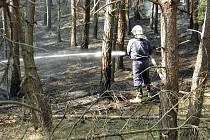Požár lesa likvidovali o Velikonocích tachovští hasiči. Les vzplanul v neděli kolem 15. hodiny nedaleko Domaslavi.