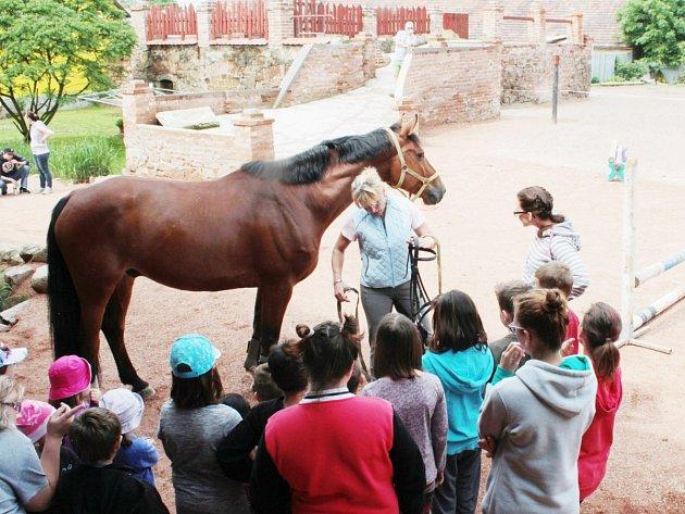 DĚTSKÝ DEN V JEZDECKÉ STÁJI VE ZHOŘI. Malé děti i ty větší si užívaly soutěží, které připravili majitelé ranče.