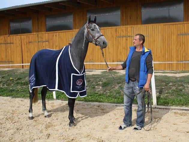 TOHOTO TŘÍLETÉHO KONĚ vyhraje v sobotu vítěz Svatováclavského derby, které se jede na závodišti v Oldřichově. Na snímku hlavní organizátor závodu Milan Pěchouček.