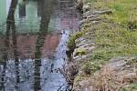 Vodní zdroje v Kladrubech