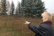 Tachovanka Jana Obertová ukazuje na místo, kde pod trávou leží volejbalové hřiště, na které navazuje dětské hřiště. Na malém snímku je hromada růží, které nikdo nevyvezl.