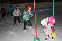 ZÁKLADNÍM DOVEDNOSTEM v technice bruslení se učí předškolní děti a žáci prvních tříd v těchto týdnech na zimním stadionu v Tachově. Na snímku děti z MŠ Pošumavská.