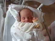 Samuel (3,46 kg, 51 cm) přišel na svět 26. 5. v 18:34 ve FN v Plzni. Z jeho narození se radují maminka Tereza Kučerová a tatínek Milan Rudolf z Kladrub. Doma se již na brášku těší Michal (2 roky a 9 měsíců.)