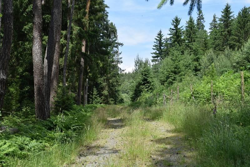 Po Svatojakubské cestě z Tuněchod do Mileva.