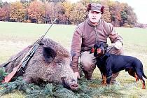 Karel Strapek s divočákem, který málem roztrhal jeho loveckého psa Cézara.