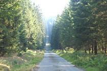 cesta k Černavě