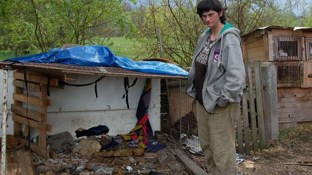 Majitelce odebraných psů se zatím příliš nedaří dát pozemek do stavu, ve kterém by ho mohla ona i její psi bezpečně užívat.