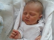 Antonio Dietz z Horšovského Týna se ve stodské porodnici 5. ledna 2015 v 9:53 hodin, měřil 51 cm a vážil 3,58 kg.Rodiče Alena a Daniel syna na svět přivítali společně. Doma se na malého Toníka těší osmiletá Stelinka.
