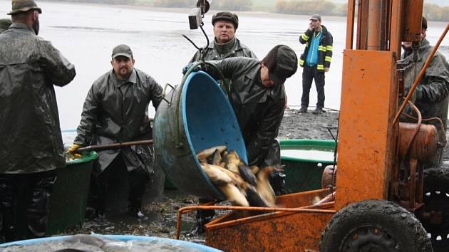 Liščí rybník v Čečkovicích vylovili ve středu rybáři z Klatovského rybářství.