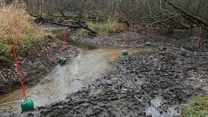Bobry v Českém lese ohlídá elektrický ohradník, jediný v republice