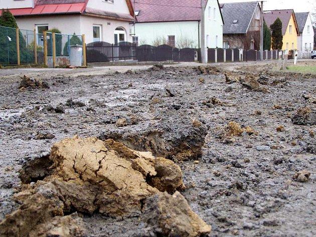 Chodová Planá 5. února, 14:30. Výškovská ulice je zcela pod dvaceticentimetrovým nánosem bláta, které zde pádá z vozidel stavební firmy, co provádí práce spojené s výstavbou nových rodinných domků.