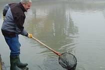 Už za mlžného rána vstoupili rybáři do vypuštěného rybníka pro více než půl tuny ryb.  Výlovu přihlížely bezmála dvě stovky lidí.